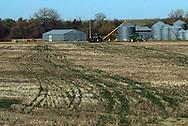 11/7/07 Smith Center, KS.farm field out side of Smith Center KS...(Chris Machian/Prairie Pixel Group)