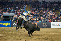 KELOWNA, CANADA - JULY 7:  Twenty-Six year old Cole Young, of Fairview, AB rides Black Wall Street from Cold Rodeo bulls during the Monster Energy Pro Bull Riding tour on July 7, 2018 at Prospera Place in Kelowna, British Columbia, Canada.  (Photo by Marissa Baecker/Shoot the Breeze)  *** Local Caption ***