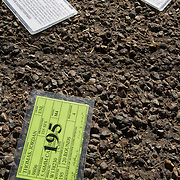 Laminated certifications indicating that a person has completed a shooting course lay in the ground in the middle of a Tucson street.