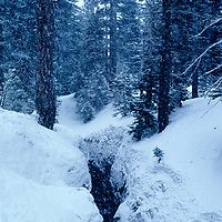 Frozen woods and volcanic fissure on Mammoth Mountain, Sierra Nevada, CA