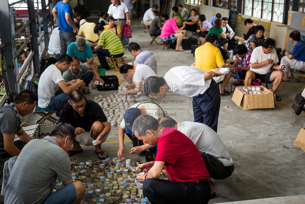 People inspect fighting crickets at the Bird & Insect Market in Shanghai, China