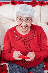 © Licensed to London News Pictures.  31/10/2013. OXFORDSHIRE, UK. <br /> <br /> Monica Stoter (80) pictured at her home in East Hendred in Oxfordshire surrounded by over 100 knitted poppies created for this year's poppy appeal. She hand makes each individual petal before knitting them together to form the flower. They are sold to family, friends and via Facebook raising hundreds of pounds. Photo credit: Cliff Hide/LNP