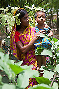 Aklima Katum with her daughter Mahmuda, who is 1.5 years old.  They are growing vegetables for themselves and also local neighbours. The vegetables being grown are Kankon; leafy vegetables, aubergine, okra, and banana.  The women have received nutrition training from IFB..Impact Foundation Bangladesh (IFB) provides care, support and treatment to people with disabilities in Bangladesh.
