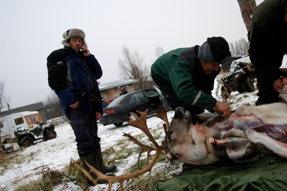 Hirvas Salmi, FINLAND.  October 14, 2007.  Veggai, 58, confers with his daughter as ti how many reindeer she would like him to slaughter.  Slaughtering in this ways is only for small scale personal use.  This marked the first day of corralling, deskinning, and snowfall...