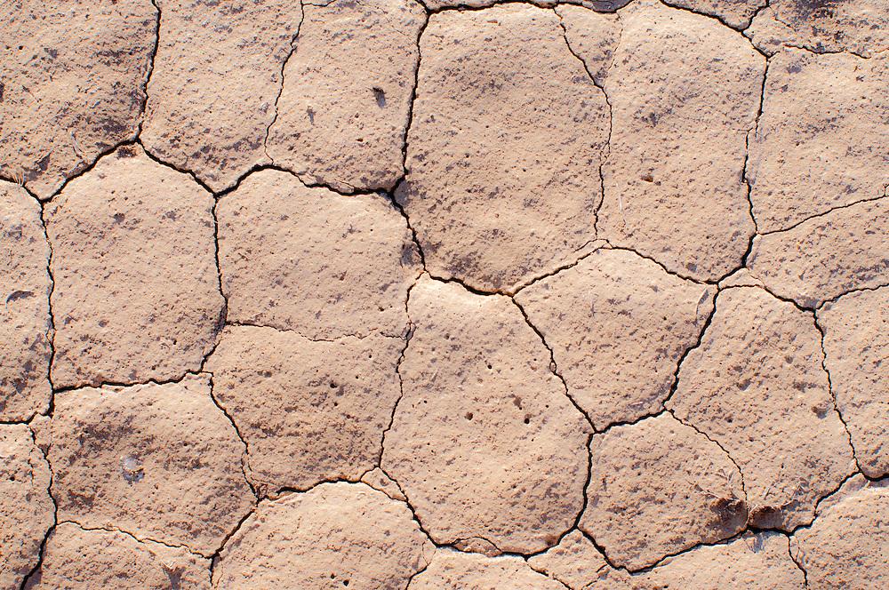 Cracked, dry earth in shrub steppe near Malheur National Wildlife Refuge, Harney County, Oregon.