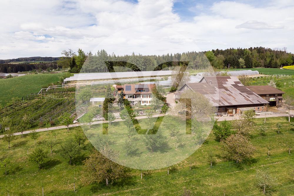 SCHWEIZ - BALLWIL - Biohof Oberfeld von Fam. Kaufmann - 24. April 2019 © Raphael Hünerfauth - http://huenerfauth.ch
