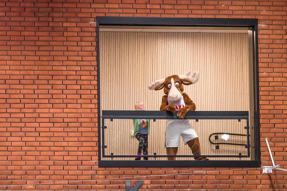 BASKETLIGAN 2019-11-18<br /> Jämtlands maskot Bruce the Moose under måndagens match i basketligan mellan Jämtland Basket och Djurgården<br /> <br /> Foto: Per Danielsson/Projekt.P