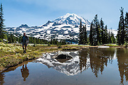 A pond reflects the volcanic cone of Mount Rainier on the trail in Spray Park, in Mount Rainier National Park, Washington, USA.