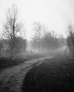 One of the sandy paths that crosses the common, covered in dawn mist at Whitmoor Common near Guildford, UK, on 9th Aptil 2015. Picture by Andrew Tobin/Tobinators Ltd