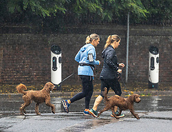 Licensed to London News Pictures. 14/09/2021. London, UK. Dog walkers brave the rain in Wimbledon south-west London as weather forecasters issue yellow weather warnings for heavy rain and thunderstorms for London and the South East today with the potential of flooding to homes and businesses and disruption to travel networks. However, sunny warm weather is expected from tomorrow with highs of 24c. Photo credit: Alex Lentati/LNP