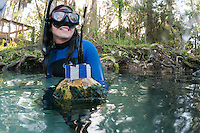 Researcher from Sea to Shore Alliance displays a manatee tracking buoy. Horizontal orientation. Three Sisters Springs, Crystal River National Wildlife Refuge, Kings Bay, Crystal River, Citrus County, Florida USA.