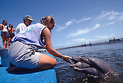 A trainer demonstrates bottle nose dolphin commands to tourists at the Dolphin Research Center  June 27, 1996 in Marathon Key, FL.  The center is where the original Flipper was trained and specializes in returning trained dolphins to the wild.