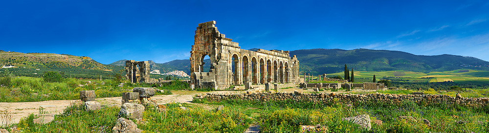 Exterior of the Basilica at Volubilis.  Completed during the reign of Macrinus in the early 3rd century, it is one of the finest Roman basilicas in Africa and is probably modelled on the one at Leptis Magna in Libya, Volubilis Archaeological Site, near Meknes, Morocco.<br /> .<br /> Visit our MOROCCO HISTORIC PLAXES PHOTO COLLECTIONS for more   photos  to download or buy as prints https://funkystock.photoshelter.com/gallery-collection/Morocco-Pictures-Photos-and-Images/C0000ds6t1_cvhPo<br /> .<br /> <br /> Visit our ROMAN ART & HISTORIC SITES PHOTO COLLECTIONS for more photos to download or buy as wall art prints https://funkystock.photoshelter.com/gallery-collection/The-Romans-Art-Artefacts-Antiquities-Historic-Sites-Pictures-Images/C0000r2uLJJo9_s0