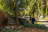 A man cleans a grave with a hand brush to Rakowicki cemetery in Krakow, Poland 2019.