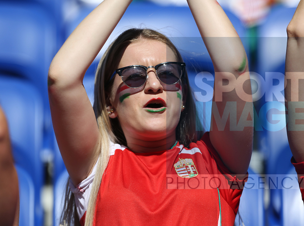 A Hungary fan during the UEFA European Championship 2016 match at the Stade de Lyon, Lyon. Picture date June 22nd, 2016 Pic Phil Oldham/Sportimage