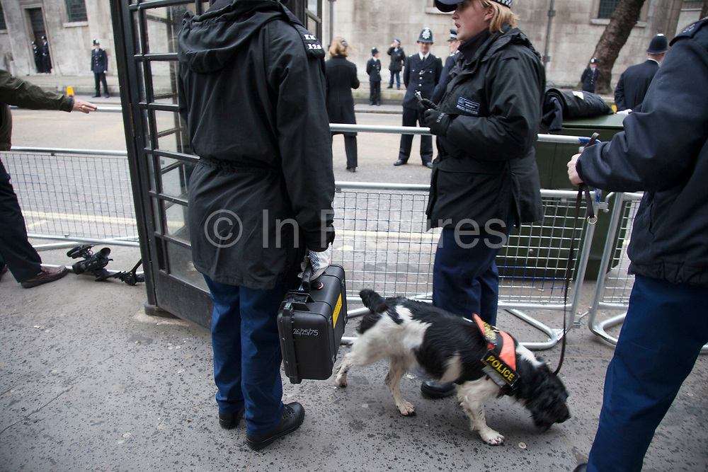 London Wednesday 17th April 2013. The funeral of former Prime Minister Baroness Margaret Thatcher. Metropolitan police sniffer dog wearing a band which says EXPLOSIVE SEARCH on duty prior to the funeral. Security was high and very inch of the route was being checked by both police officers and dogs.