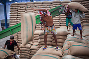 "15 NOVEMBER 2012 - PATHUM THANI, PATHUM THANI, THAILAND: Workers stack bags of rice bought from local farmers by the Thai government in a rice warehouse in Pathum Thani. Each bag weighs 100 kilos. The Thai government under Prime Minister Yingluck Shinawatra has launched an expansive price support ""scheme"" for rice farmers. The government is buying rice from farmers and warehousing it until world rice prices increase. Rice farmers, the backbone of rural Thailand, like the plan, but exporters do not because they are afraid Thailand is losing its position as the world's #1 rice exporter to Vietnam, which has significantly improved the quality and quantity of its rice. India is also exporting more and more of its rice. The stockpiling of rice is also leading to a shortage of suitable warehouse space. The Prime Minister and her government face a censure debate and possible no confidence vote later this month that could end the scheme or bring down the government.    PHOTO BY JACK KURTZ"