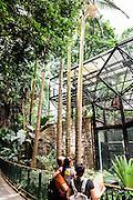 The Zoological & Botanical Gardens, Hong Kong