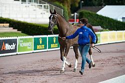 Dresler Yonatan, (ISR), Flylight<br /> Alltech FEI World Equestrian Games™ 2014 - Normandy, France.<br /> © Hippo Foto Team - Jon Stroud<br /> 25/06/14