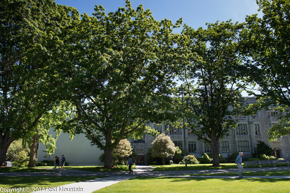 The pathways and trees amoungst the beautiful campus at UBC, Vancouver. Photo: © Rod Mountain
