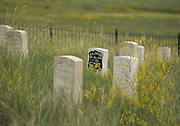 Little Bighorn Battlefield National Monument, Crow Agency, Montana, the sight of Custer's last stand. George Armstrong Custer's headstone is in the center.