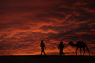 Silhouettes of two men with a camel (dromedary) in the desert against dark, red, cloudy sky.