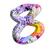 The number Eight Part of a set of letters, Numbers and symbols of 3D Alphabet made with colourful floral images on white background
