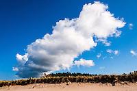 Sweden, Gotska Sandön national park. North side.