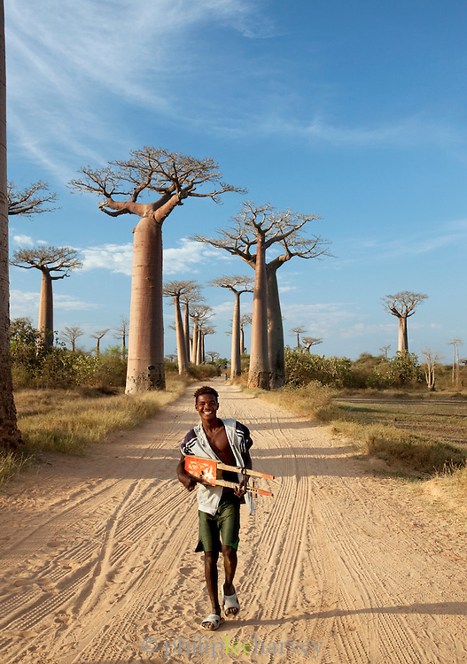 A young man walking down Avenue of the Baobabs with a home made guitar, near Morondava, Madagascar