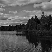 """Peaceful Easy Feeling"" B&W<br />
