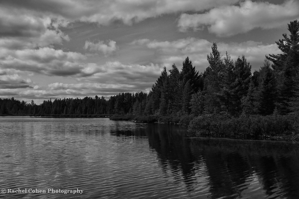 """""""Peaceful Easy Feeling"""" B&W<br /> <br /> You'll get a peaceful easy feeling with this lovely black and white vista of a lake, forest, reflections, and a beautiful cloud filled sky. Located in Michigan's Upper Peninsula!!<br /> <br /> Black and White images by Rachel Cohen"""