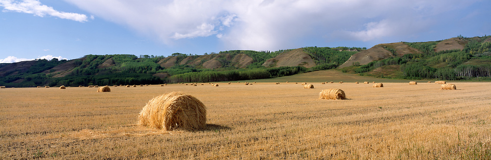 Hay Bails, Peace River Country