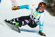 20150123 AUT: FIS World Championships of Snowboard, Lachtal
