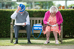 © Licensed to London News Pictures. 31/07/2014. Chichester, UK. A couple fill in betting slips. Ladies Day at Glorious Goodwood at Goodwood racecourse in Chichester today 31/07/14. Photo credit : Stephen Simpson/LNP