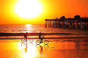 Bike Riding On The Beach At Sunset
