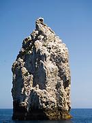 High Peak Rocks. View of Poor Knights Islands, summer, Northland, New Zealand