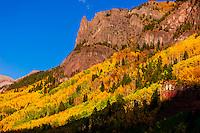 Fall color, Camp Bird Road, near Ouray, in the San Juan Mountains of southwest Colorado USA.