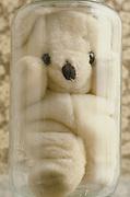 stuffed teddy bear in glass jar