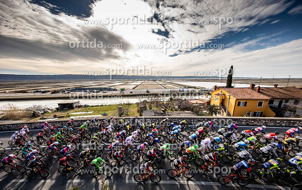 Peloton at Seca during the cycling race 6. VN Slovenske Istre / 6th Slovenian Istra Grand Prix, on February 24, 2019 in Izola/ Isola, Slovenia. Photo by Vid Ponikvar / Sportida