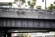 High Line Park Beauty | August 2021