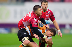 Steff Evans of Scarlets closes down William Small-Smith of Toyota Cheetahs - Mandatory by-line: Dougie Allward/JMP - 02/11/2019 - RUGBY - Parc y Scarlets - Llanelli, Wales - Scarlets v Toyota Cheetahs - Guinness PRO14