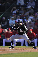 TEMPE, AZ - MARCH 4:  Juan Pierre #1 of the Chicago White Sox bunts against the Los Angeles Angels on March 4, 2010 at Tempe Diablo Stadium in Tempe, Arizona. (Photo by Ron Vesely)