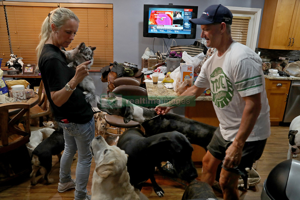 Gretchen and Ron Levine of A Paw Above in Hollywood are taking care of 20 dogs and 21 cats as   they've been inundated with pet care requests by people fleeing Hurricane Irma. (Photo by Susan Stocker/Sun Sentinel/TNS/Sipa USA)<br />SOUTH FLORIDA OUT; NO MAGS; NO SALES; NO INTERNET; NO TV