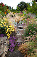drought tolerant plantings along the hillside garden and pathway