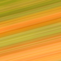 """""""Streak of Autumn""""<br /> <br /> This image can be whatever you want it to be! Enjoy the diagonal lines in beautiful variations of green, orange and yellow!!<br /> <br /> Nature Abstracts by Rachel Cohen"""