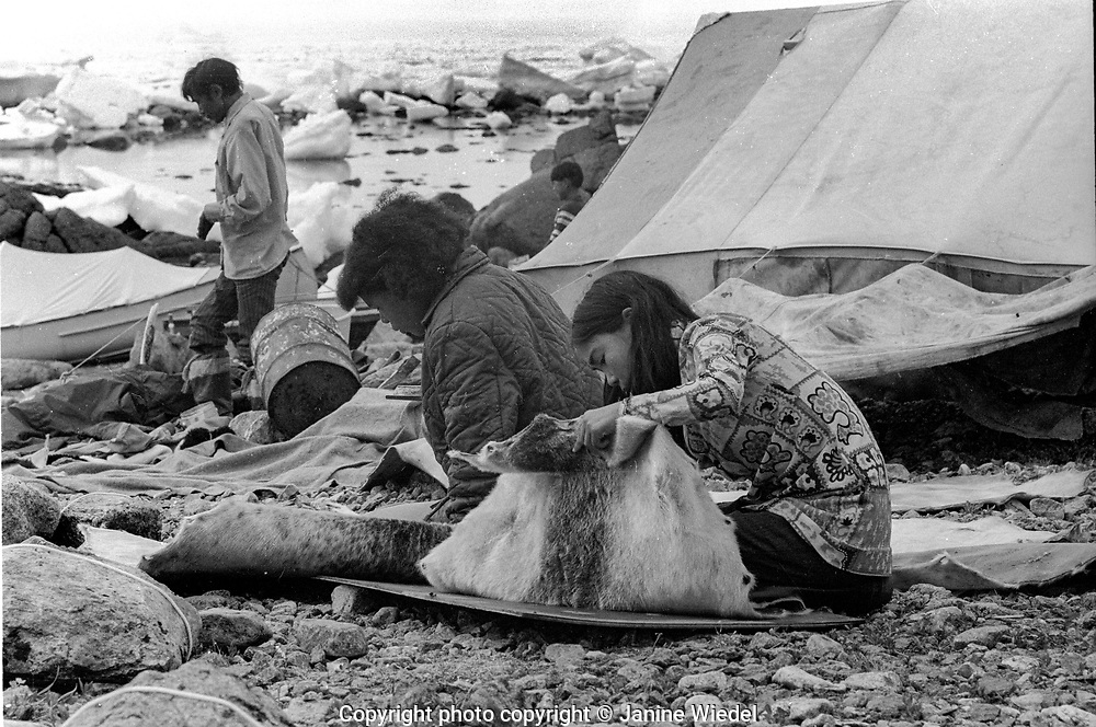 Inuit family living in tents for the summer live off the land. nr Pangnirtung a small settlement in the Canadian Arctic in the territory of Nunavut (North West Territories) 1973
