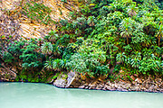Parvati River Valley,  Himachal Pradesh, India