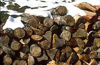 Firewood and snow
