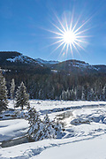 Round Prairie during winter in Yellowstone National Park