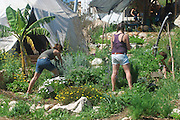Israel, Ecological farm, Organic farming